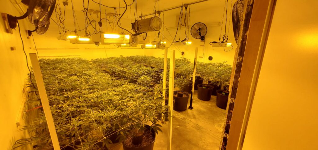 stackable Grow Pot